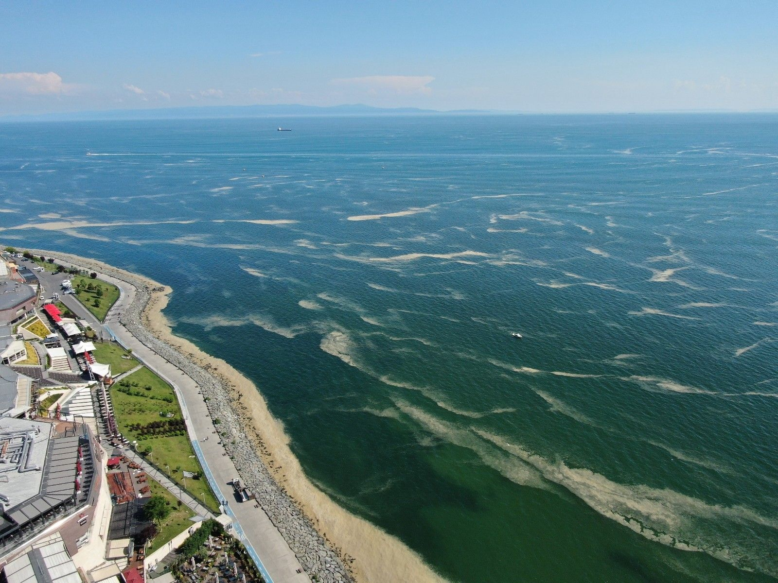 2021/06/deniz-salyasi-bu-kez-bakirkoy-kiyilarini-sardi-20210613AW34-2.jpg