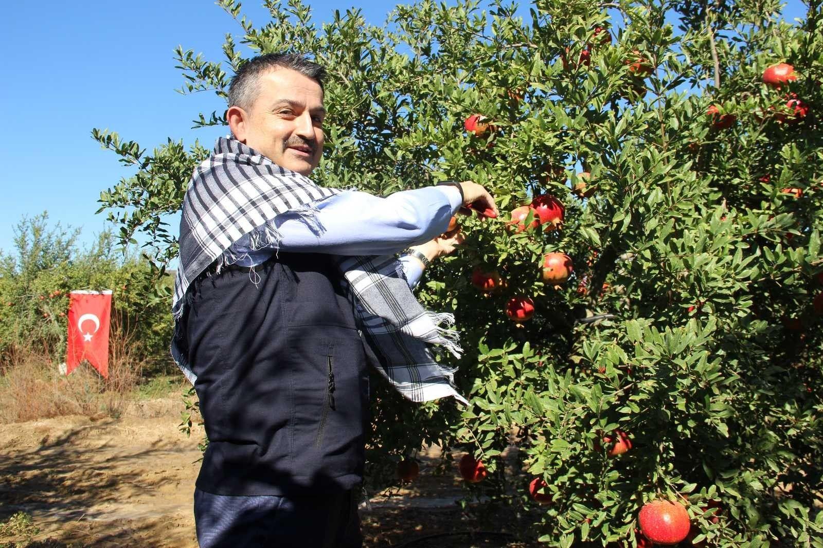 2021/09/akdeniz-meyve-sinegine-karsi-kisir-bocek-salimi-20210924AW42-3.jpg