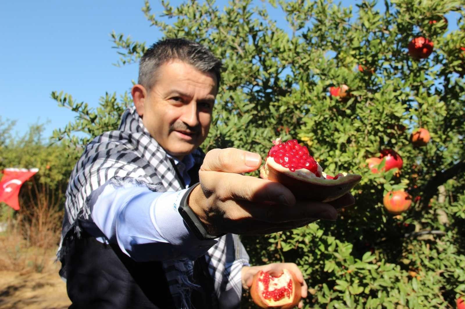 2021/09/akdeniz-meyve-sinegine-karsi-kisir-bocek-salimi-20210924AW42-4.jpg