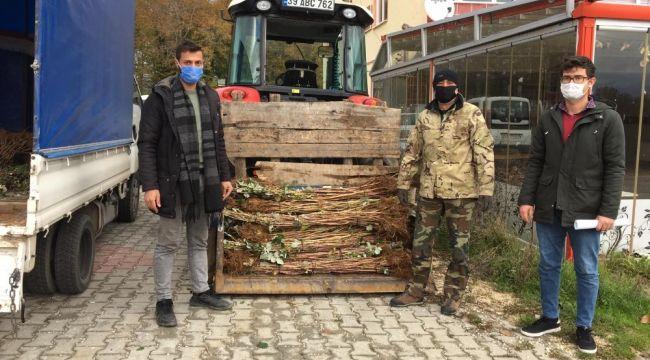 Demirkzöy'de ahududu fidanları dağıtıldı