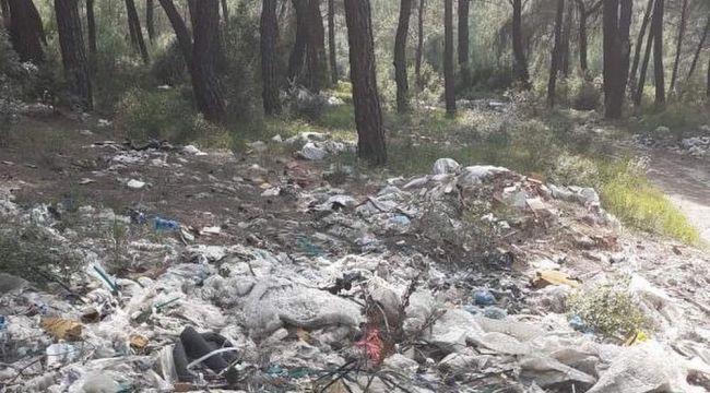 Çevre düşmanları! Ormanı çöpe çevirdiler