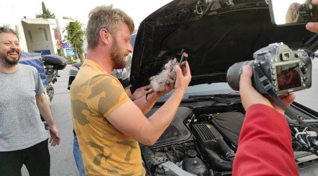 Otomobilin motorundan çıkardığı kediyi sahiplendi