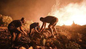 Acı haber! İki orman işçisi hayatını kaybetti