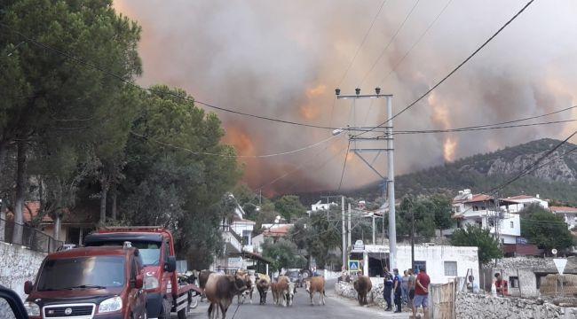 Gökbel köyü boşaltıldı
