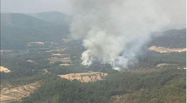 Muğla'da yeni bir yangın çıktı