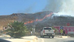 Aliağa ve Urla'da çıkan yangınlar söndürüldü
